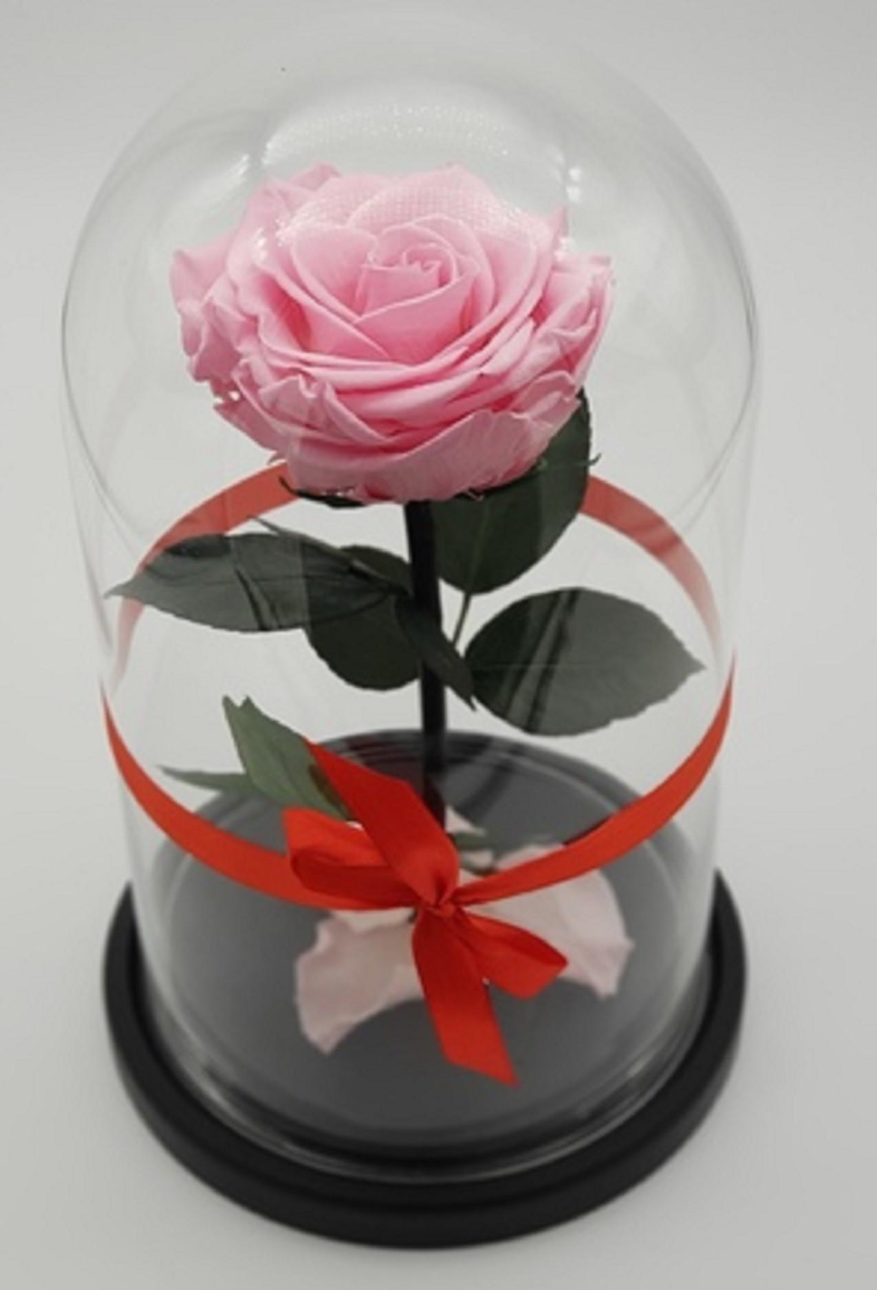 Роза в колбе мини Розовая 22*12,5*6 см