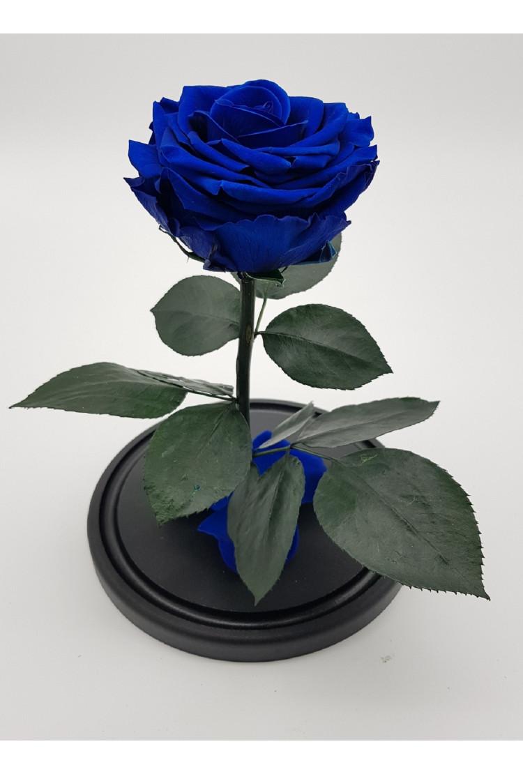 Роза в колбе премиум Синяя 27*15*8 см