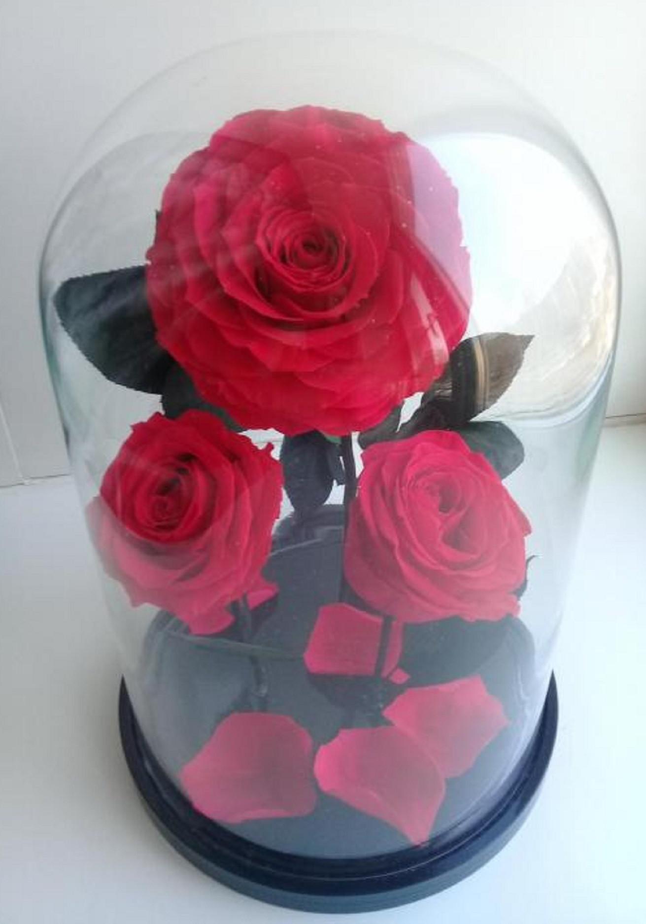 Роза в колбе Трио Кинг Фуксия 32*22*12 см