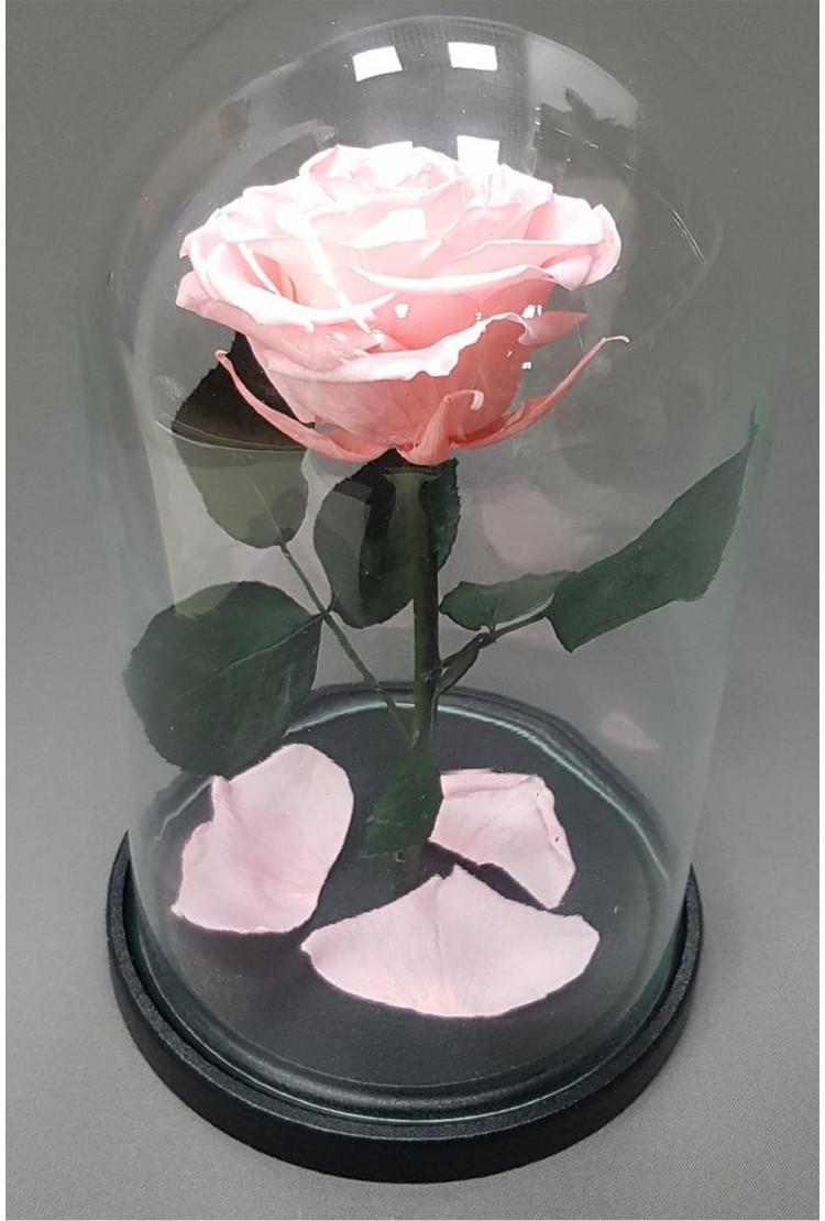 Роза в колбе Кинг Розовая 30*18*12см