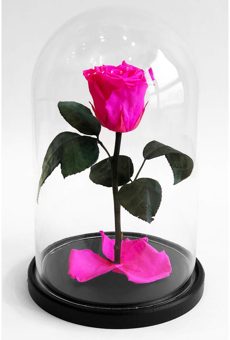 Роза в колбе мини Розовая 22*12,5*6см