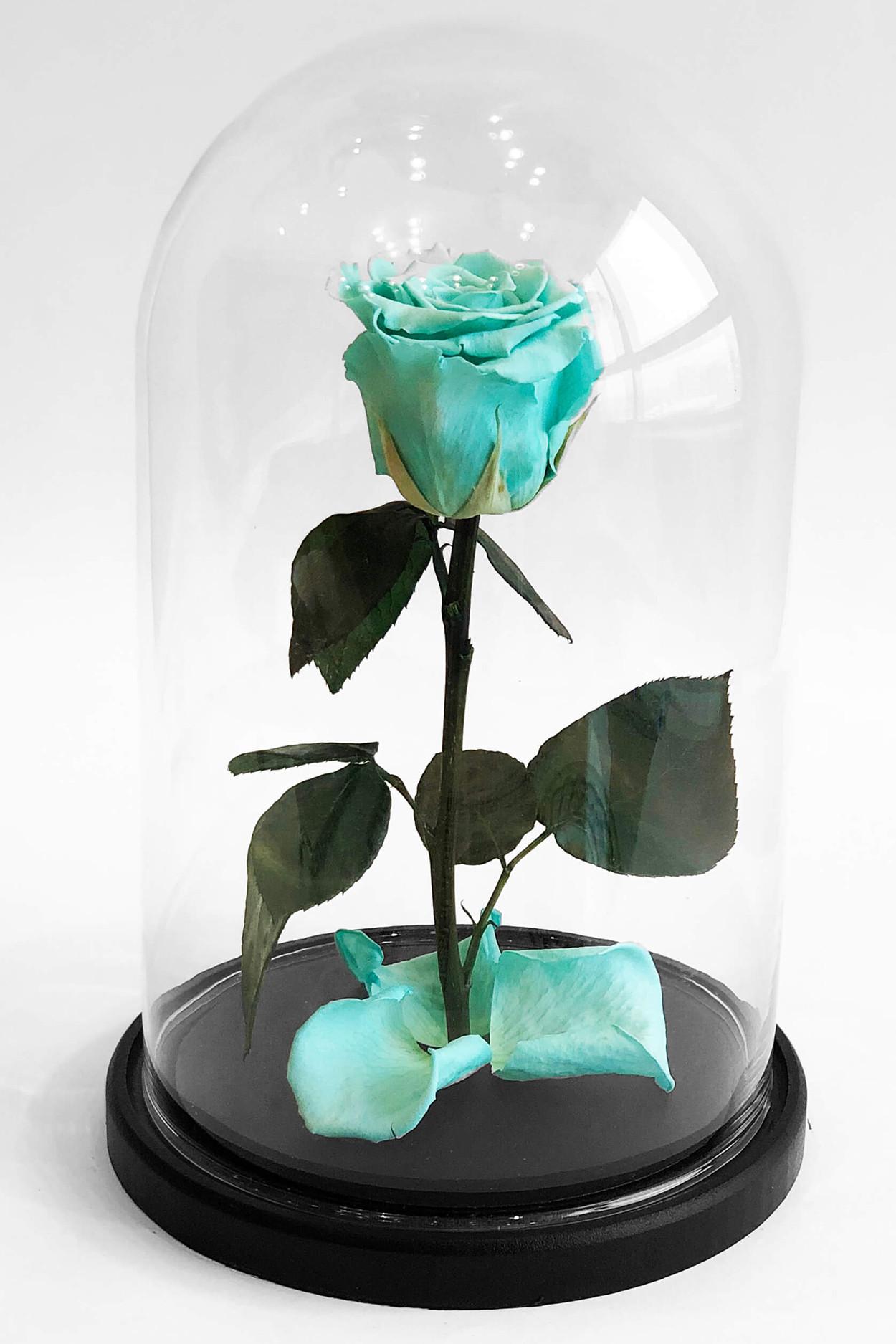Роза в колбе премиум Тифани 27*15*6см