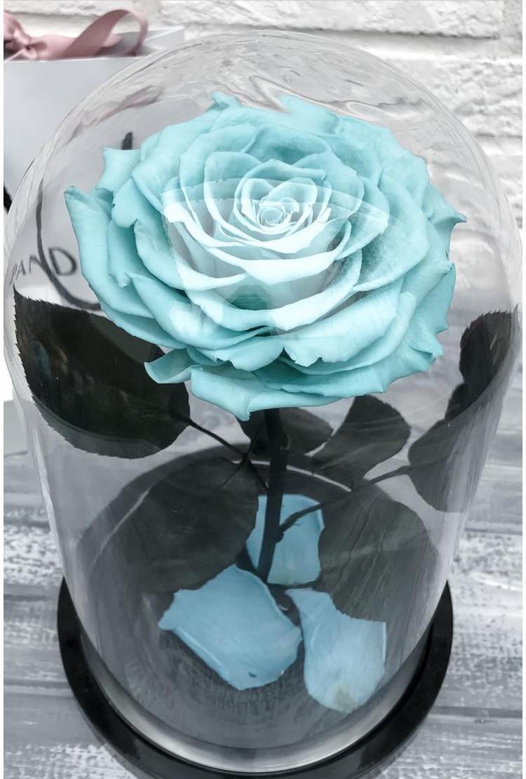 Роза в колбе Кинг Голубая 30*18*12см