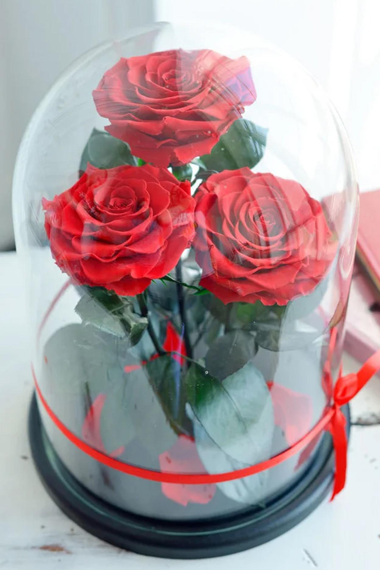 Роза в колбе Трио Кинг Красные 32*22*12см