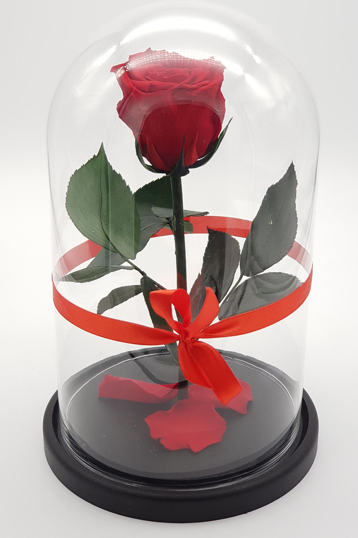 Роза в колбе микро Красная 17*11*3см
