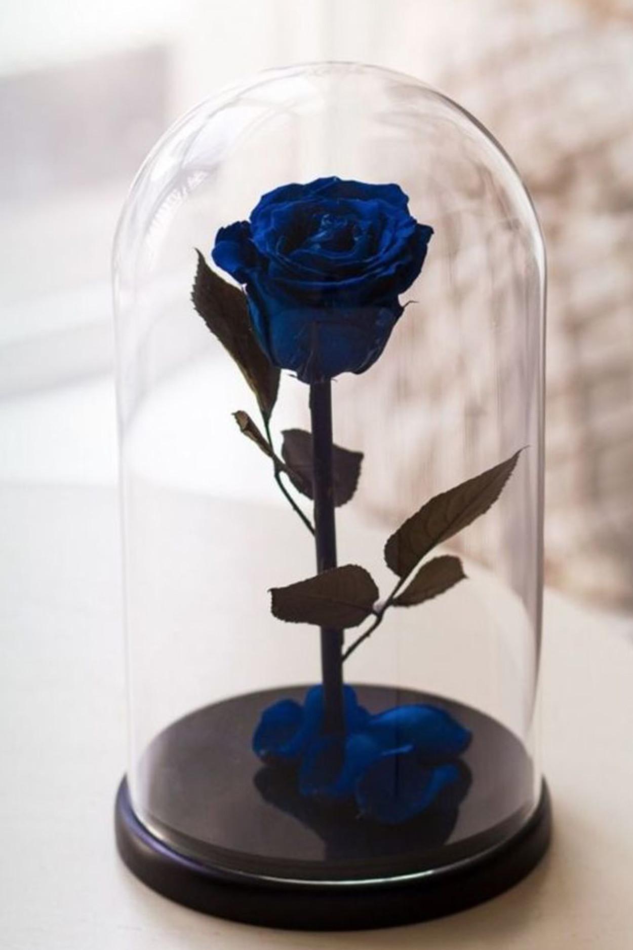 Роза в колбе микро Синяя 22*11,5-6см