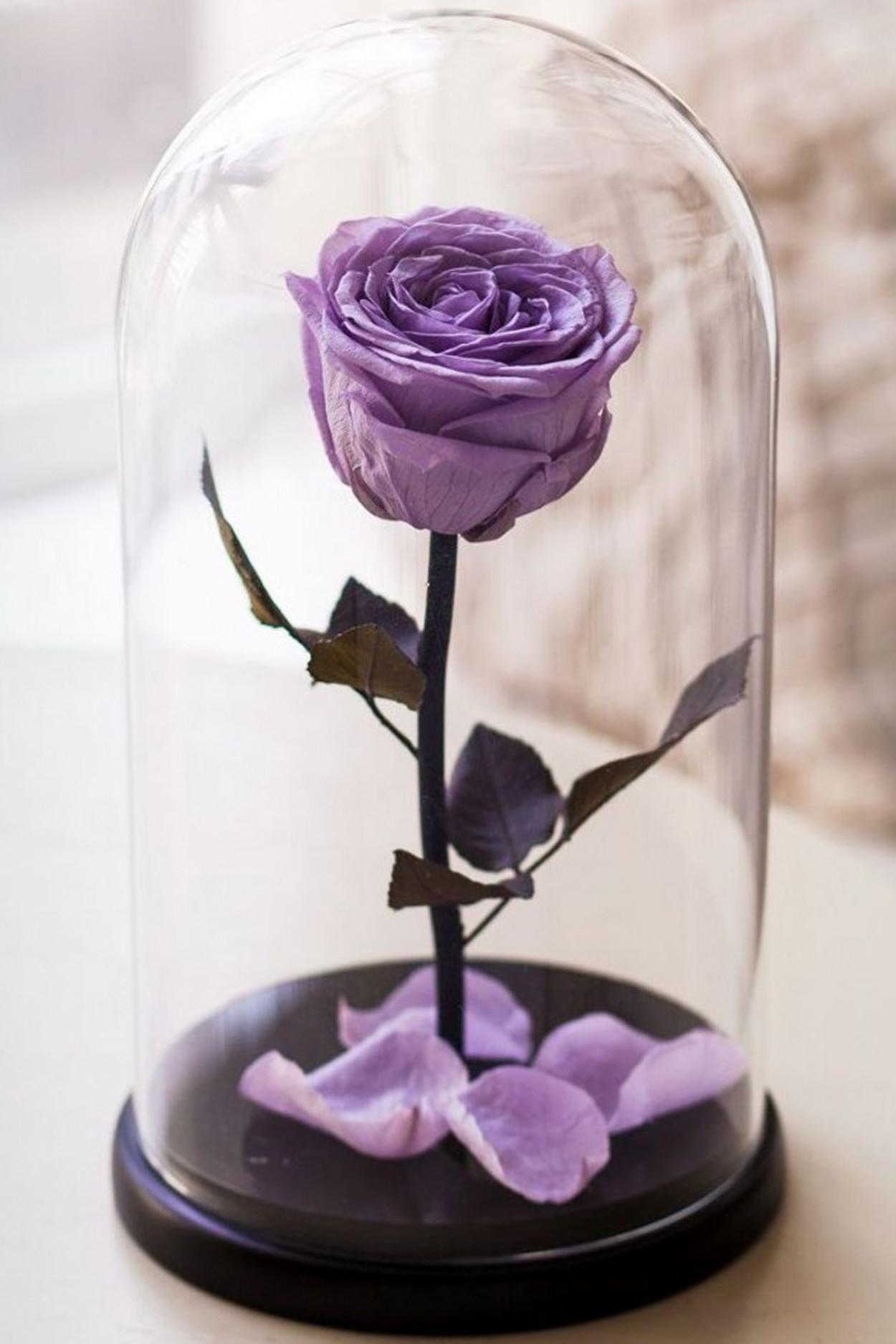 Роза в колбе мини Сиреневая 22*12,5*6см