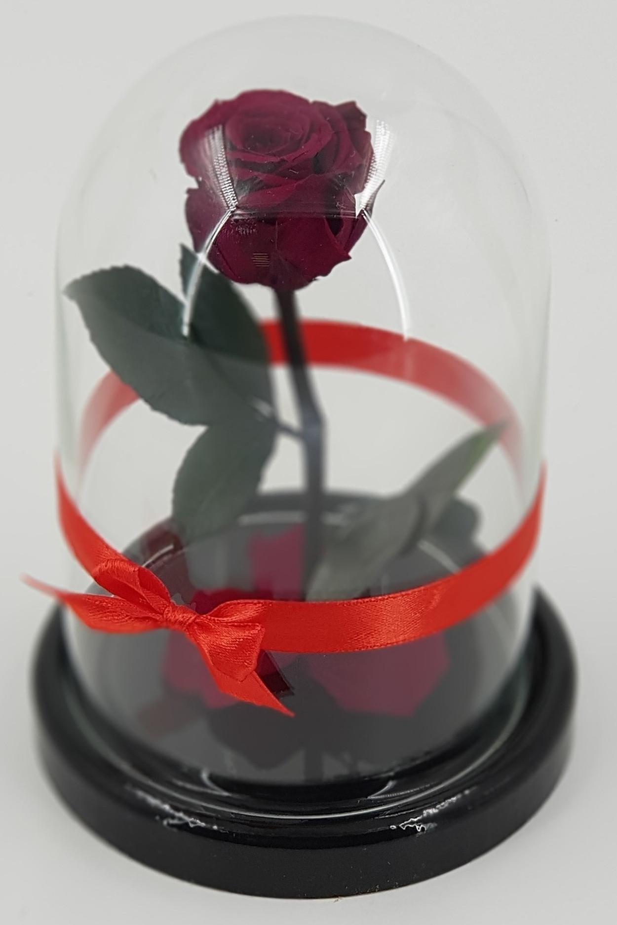 Роза в колбе мини Бордовая 22*12,5*6см
