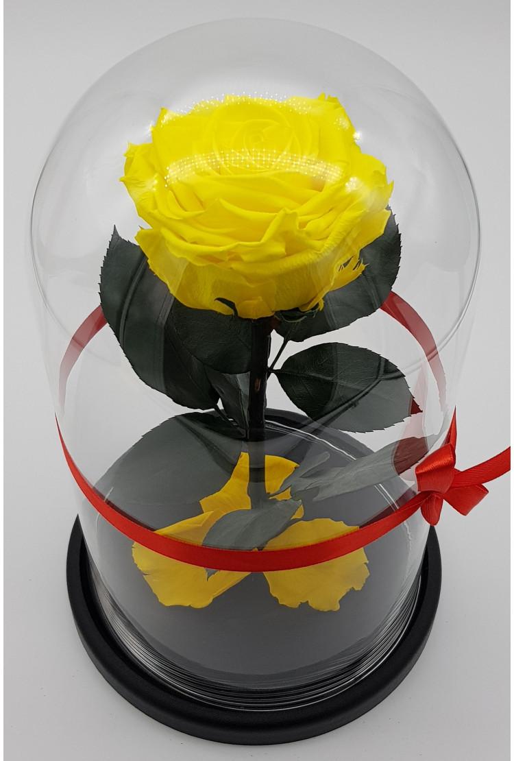 Роза в колбе премиум Желтая 27*15*8см