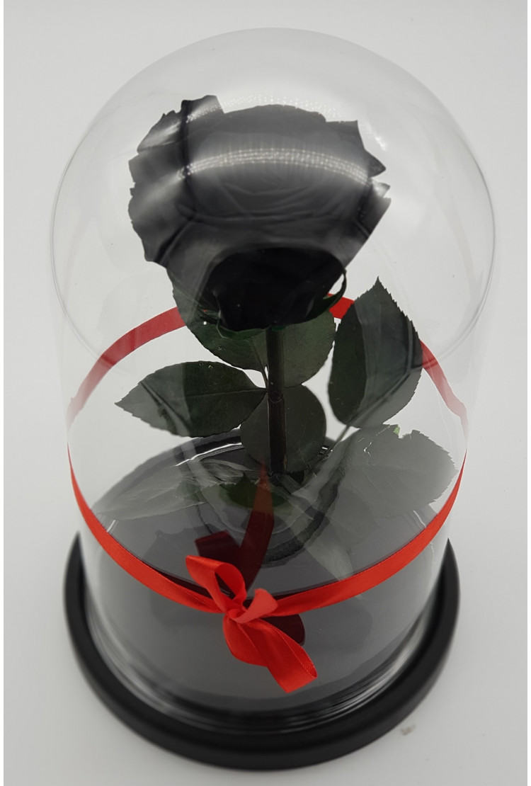 Роза в колбе премиум Черная 27*15*8см