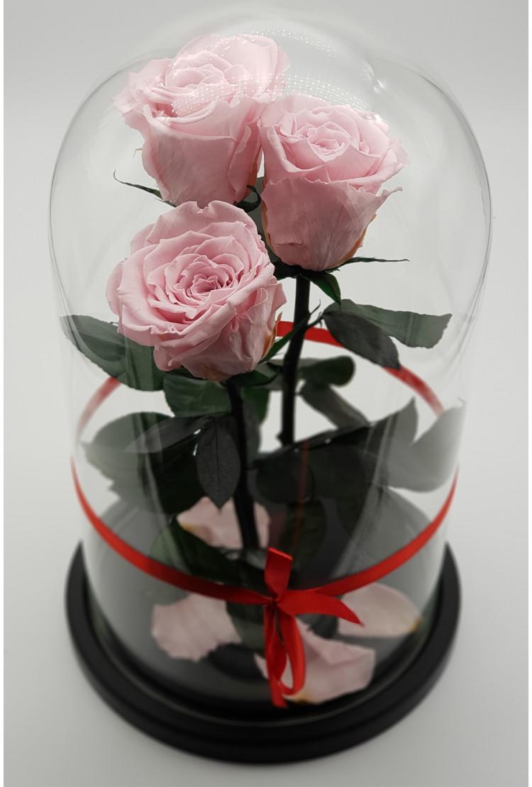 Роза в колбе Трио мини Розовые 22*12,5*4см
