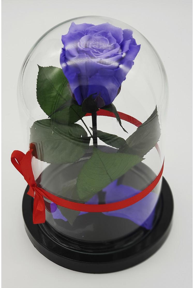 Роза в колбе премиум Фиолетовая 27*15*6см