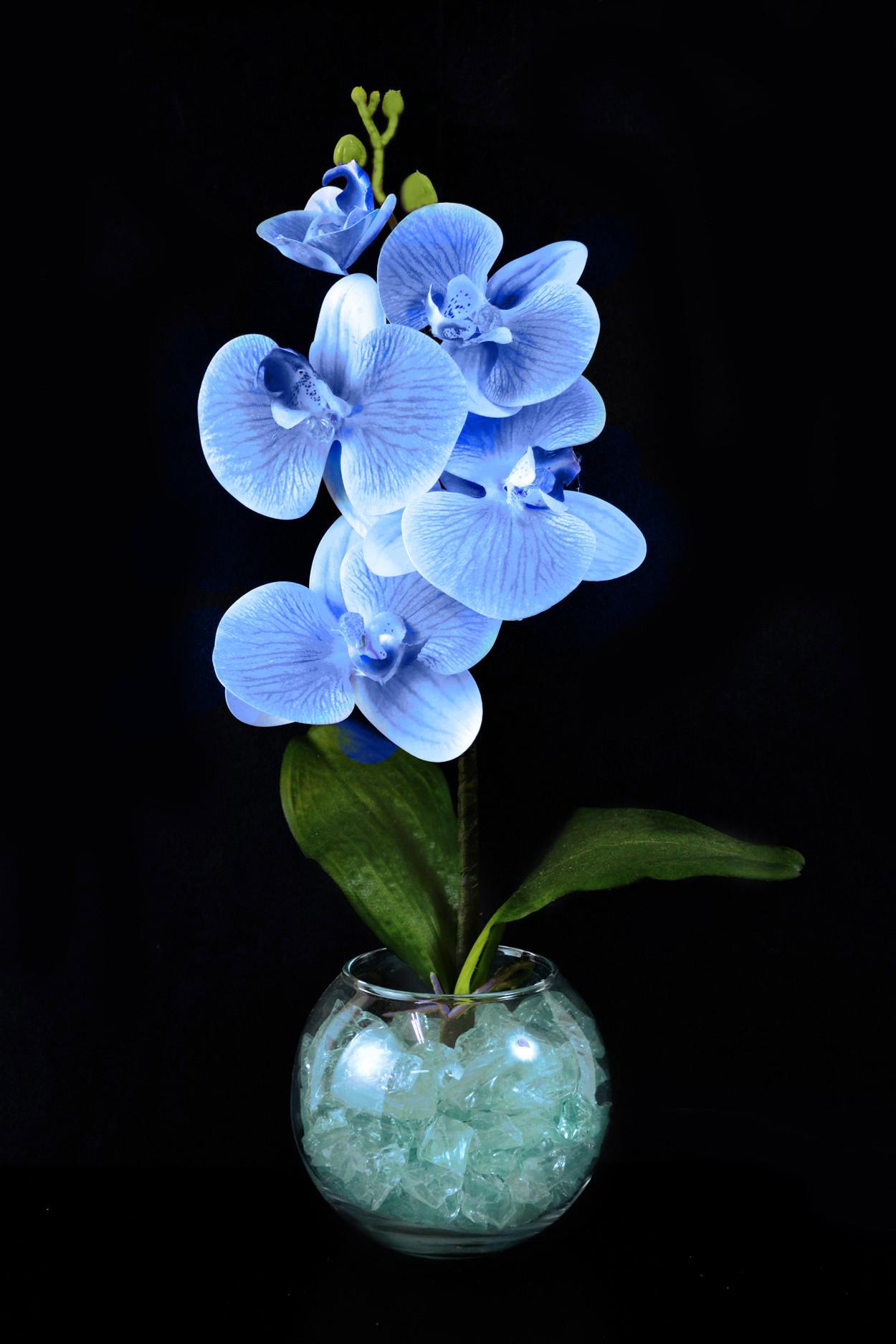 Светильник Орхидея Синяя (син) 5 цветков