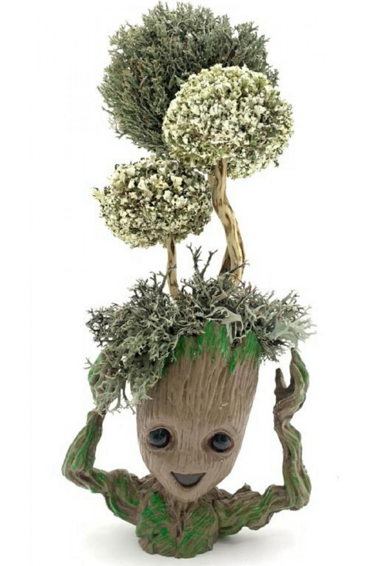 Грут с деревом из цетрарии, 33 см