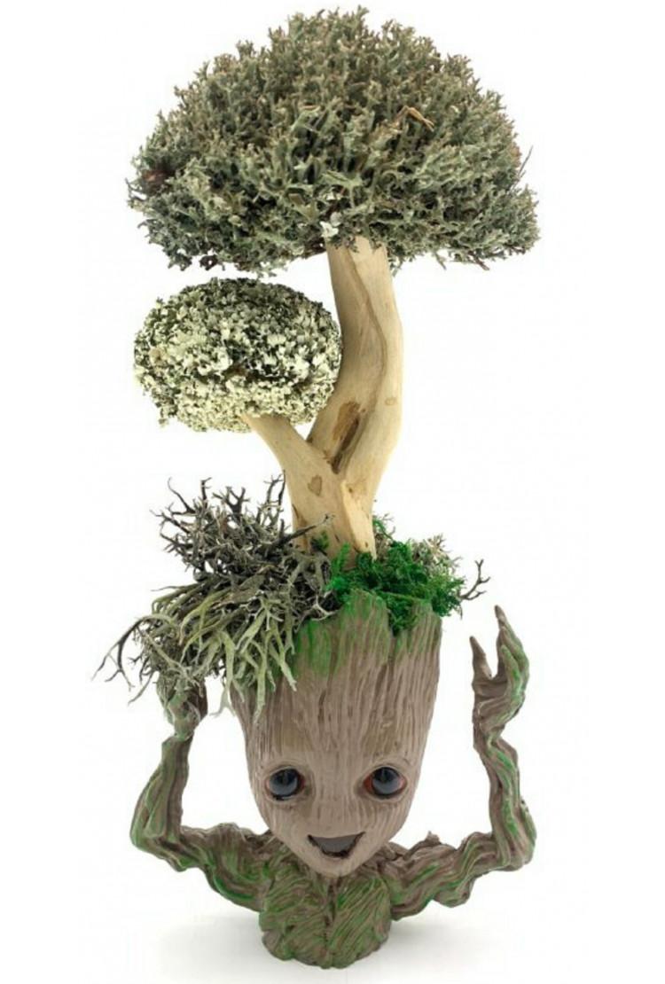 Страж Галактики с деревом из цетрарии, 33 см