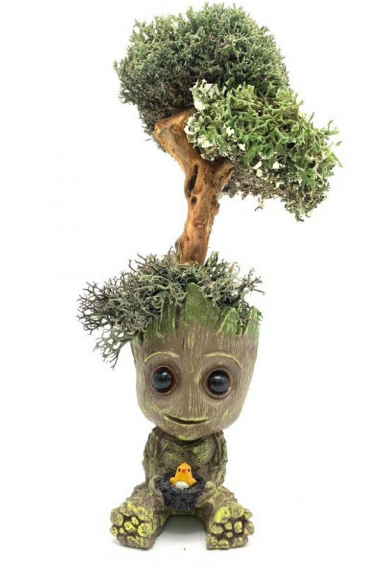 Малыш Грут с деревом из цетрарии, 35 см