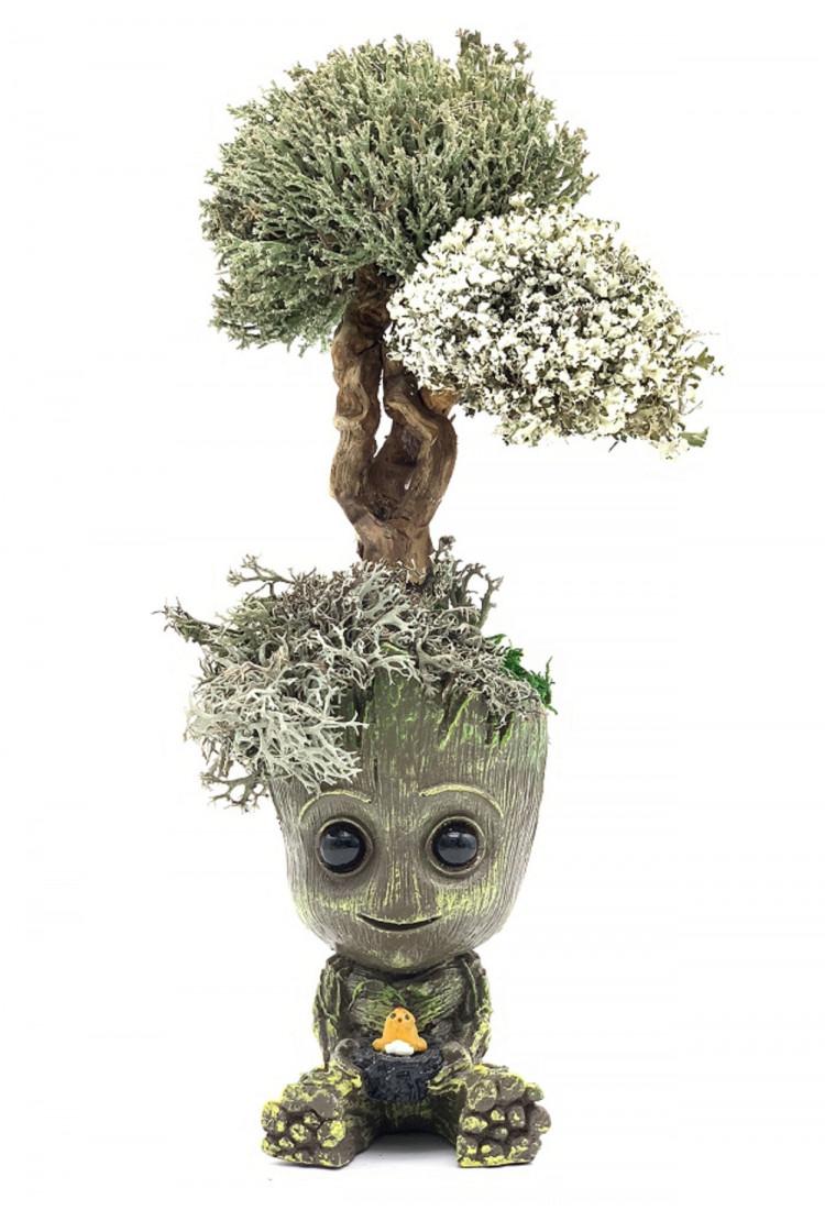 Малыш грут с деревом цетрарии, 32 см