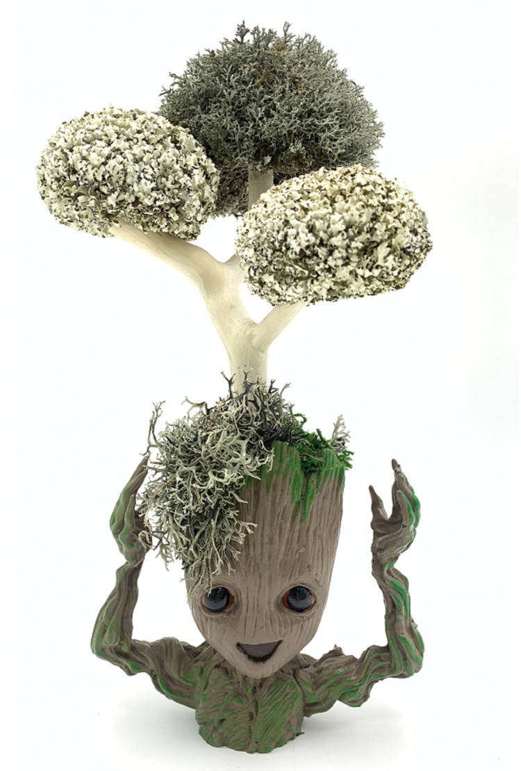 Грут с деревом из цетрарии, 30 см