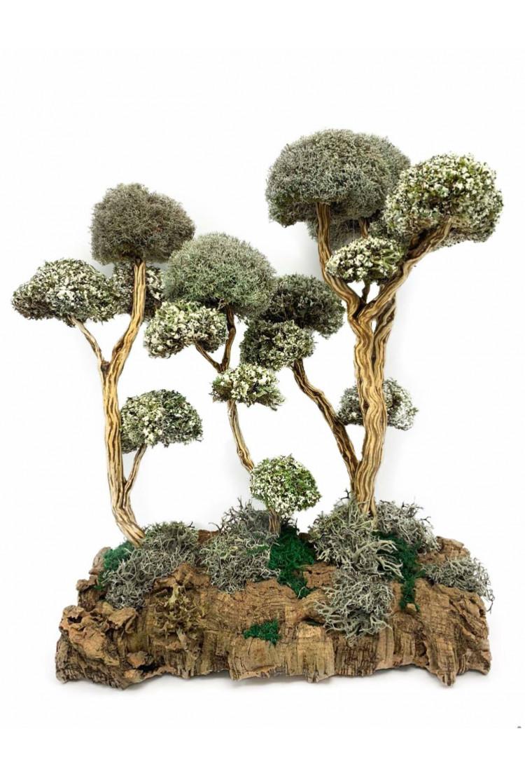 Композция деревьев с кронами из цетрарии