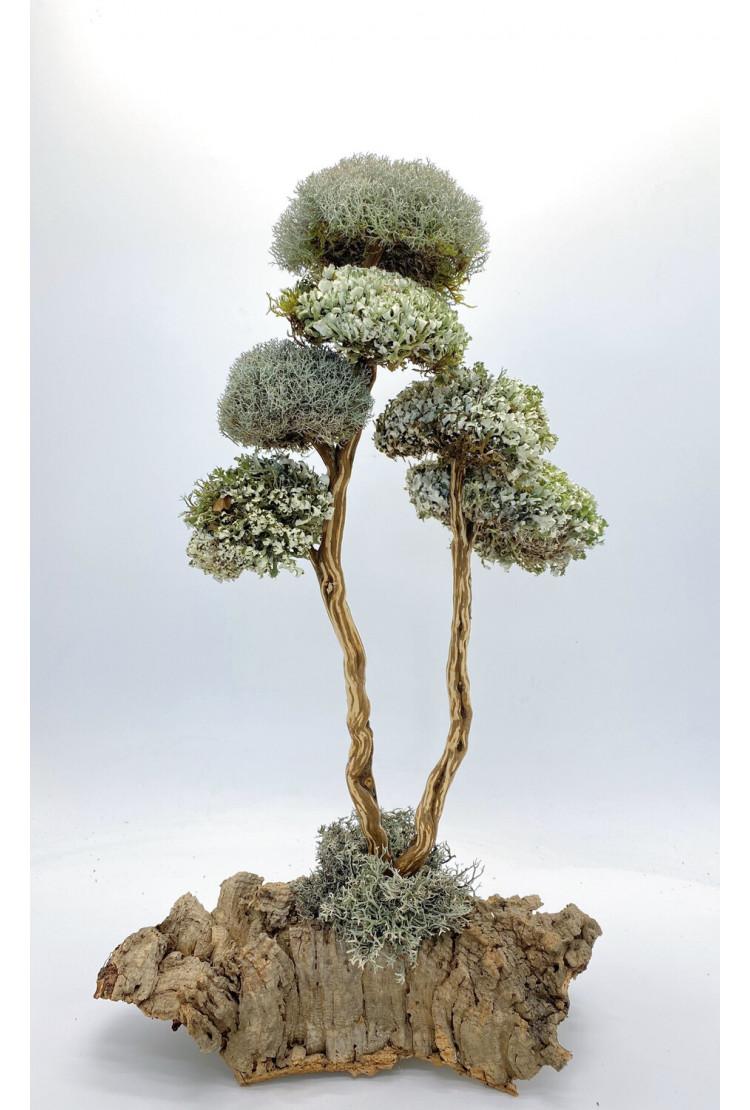 Дерево из цетрарии 52 см