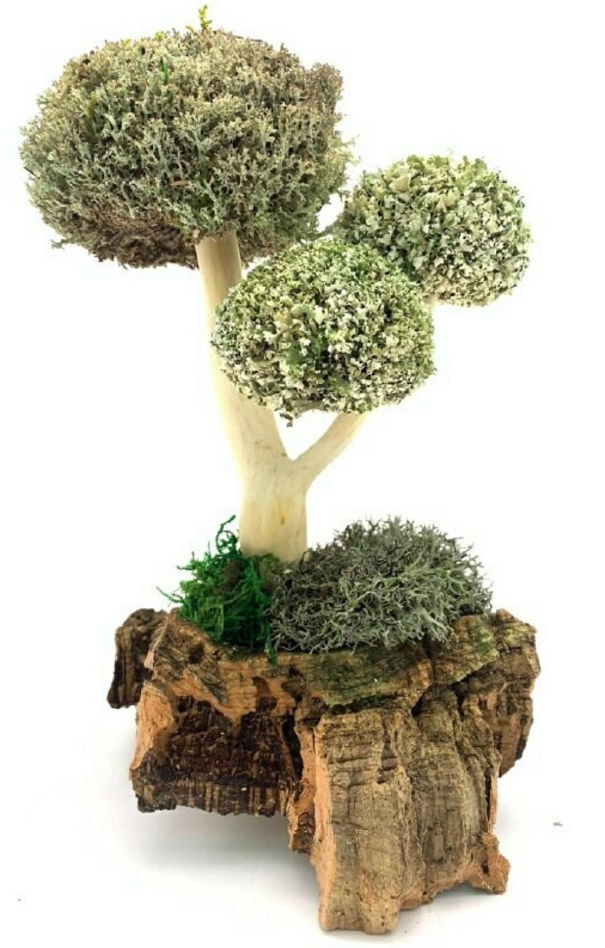 Дерево из цетрарии, 28 см
