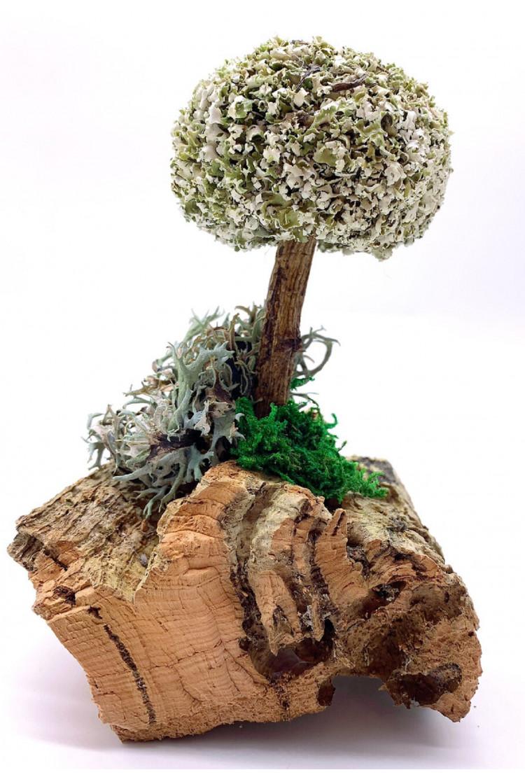 Дерево из цетрарии, 16 см