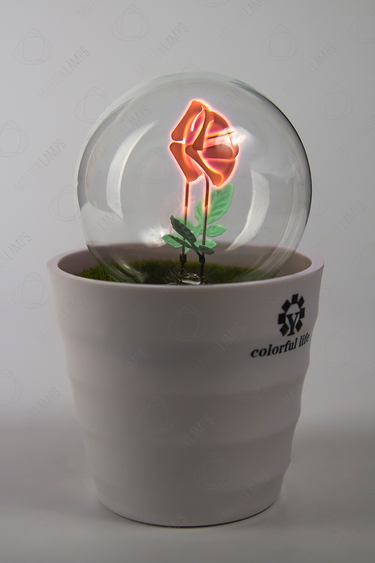 Светящийся цветок Роза