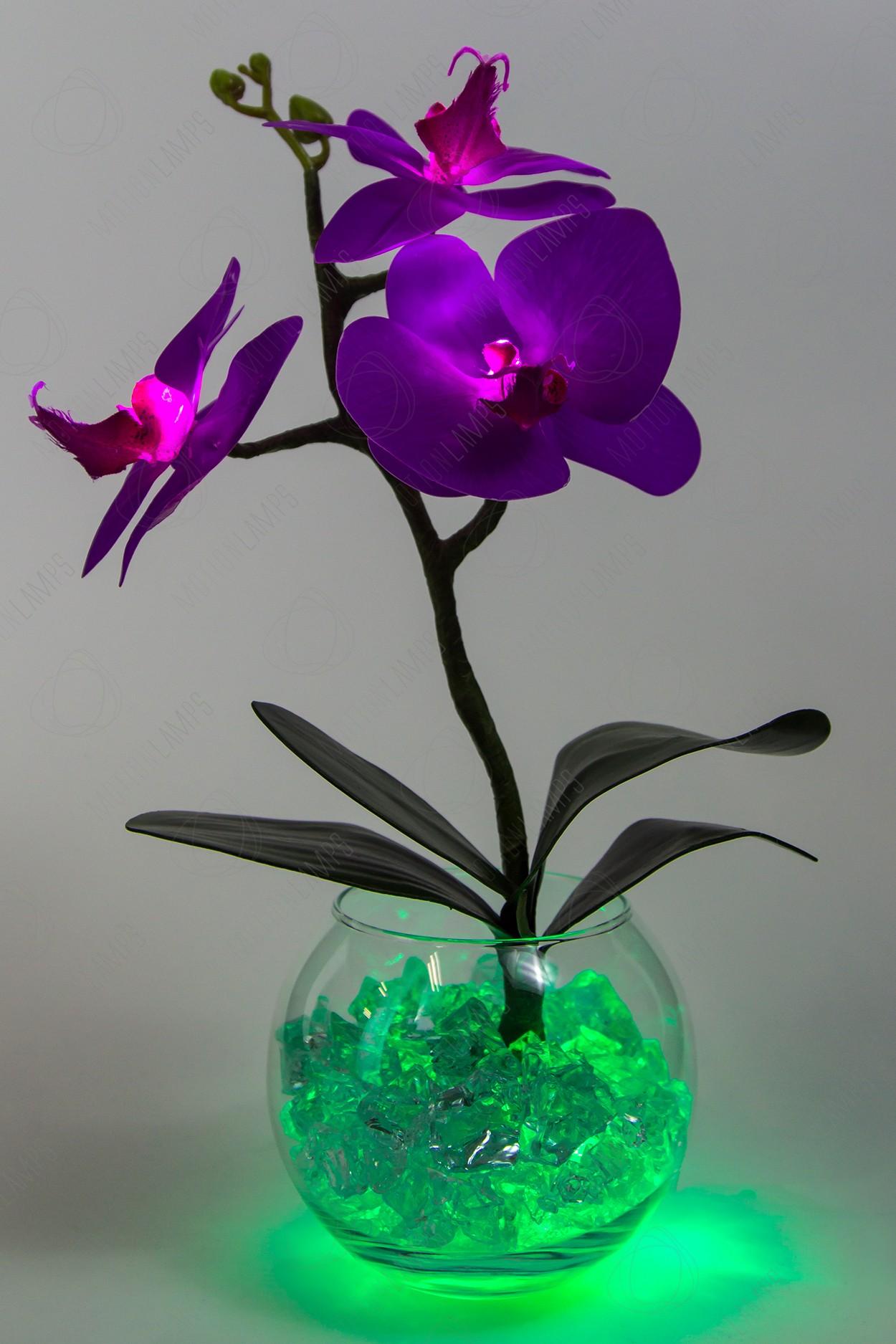 Ночник Орхидея фиолетовый(зел) 3 цветка