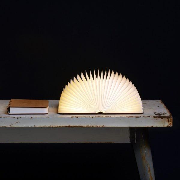Ночник светящаяся книга Lumobook (клен)