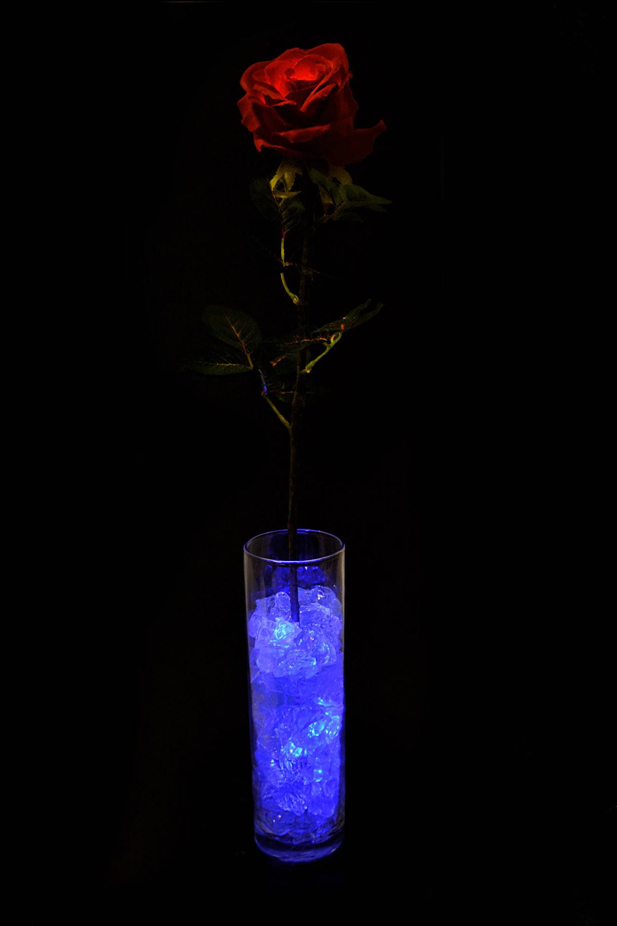 Светодиодная Роза Красная с синей подсветкой 55см