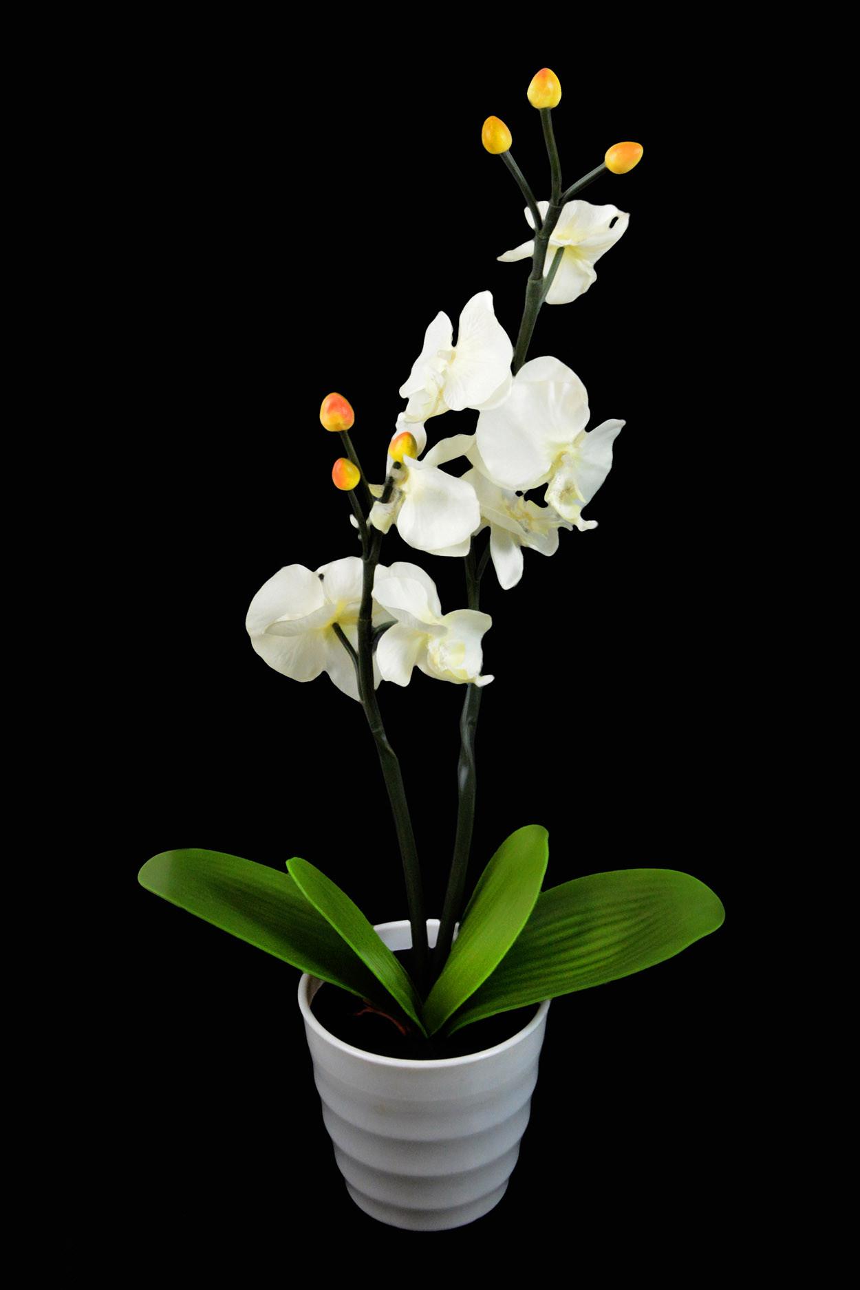 Светодиодный светильник Орхидея белая