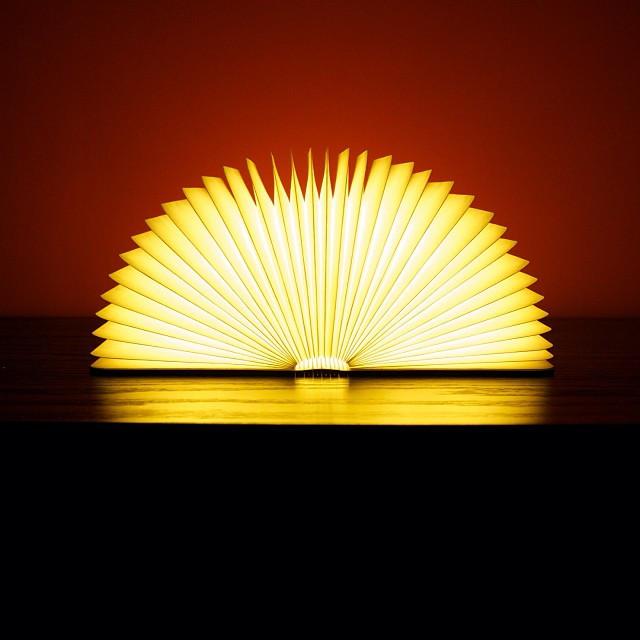 Светильник книга Lumobook (вишня) (17*21,5см)
