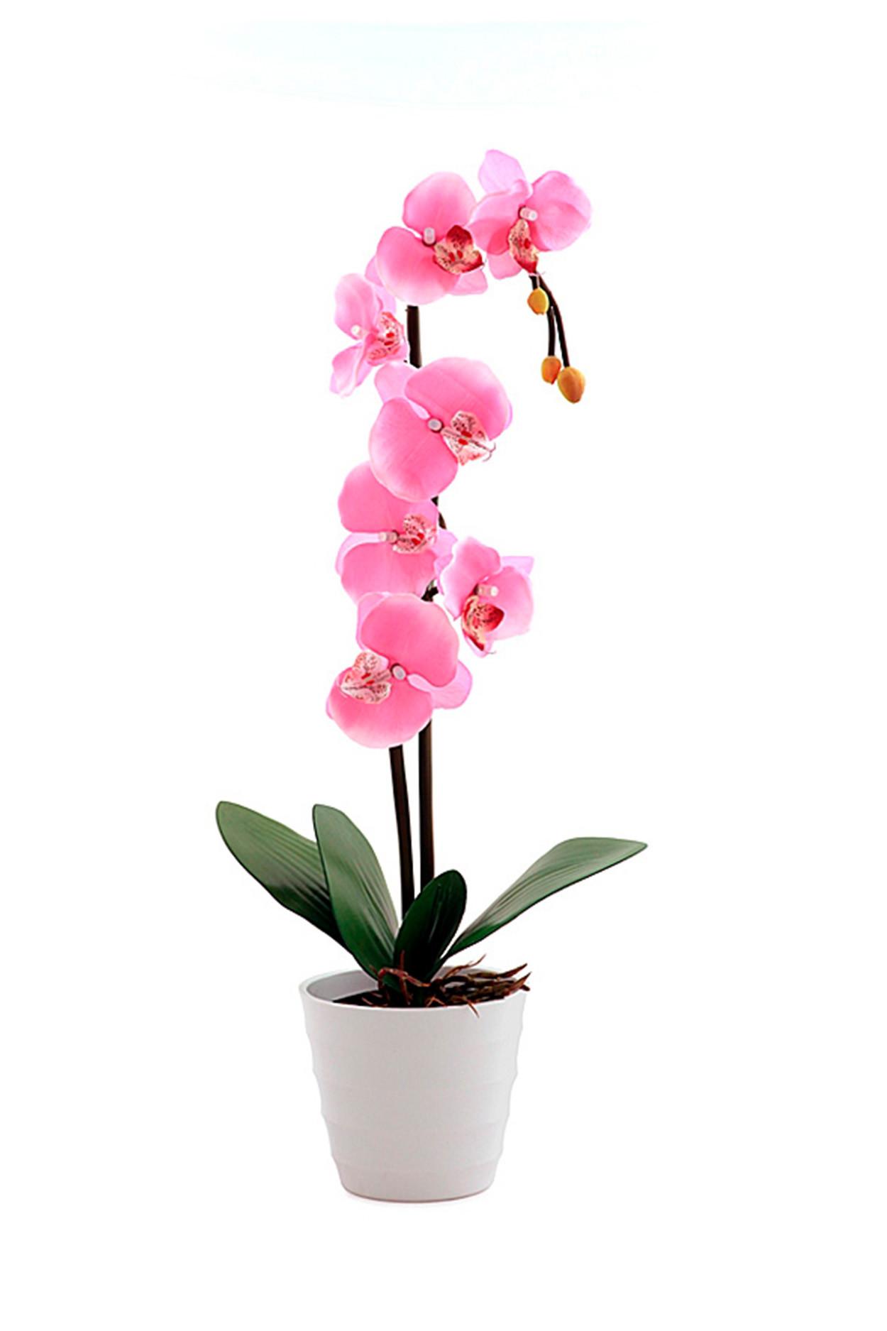 Светодиодный светильник Орхидея розовая