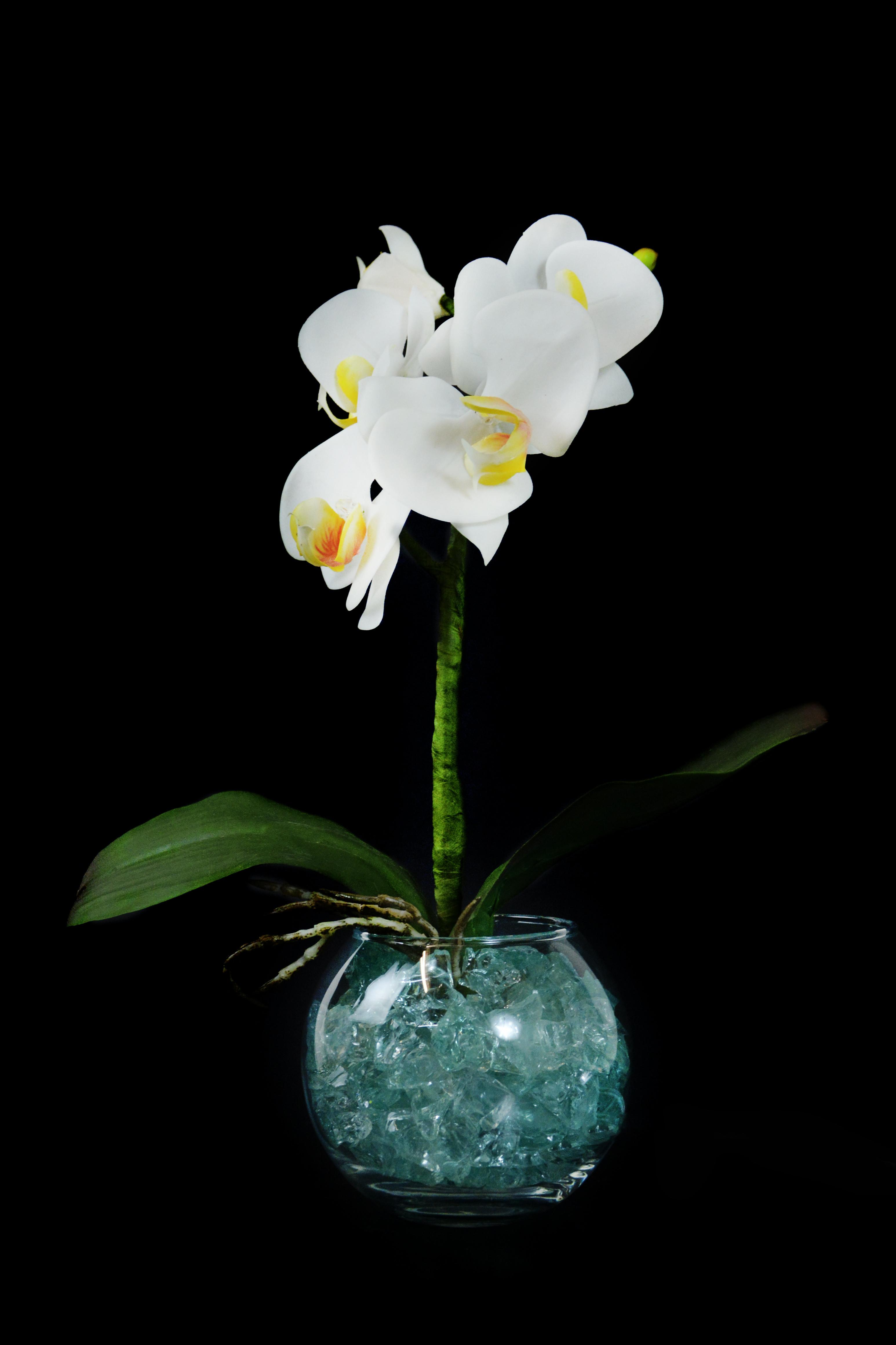 Светильник Орхидея белый(зел) 5 цветов