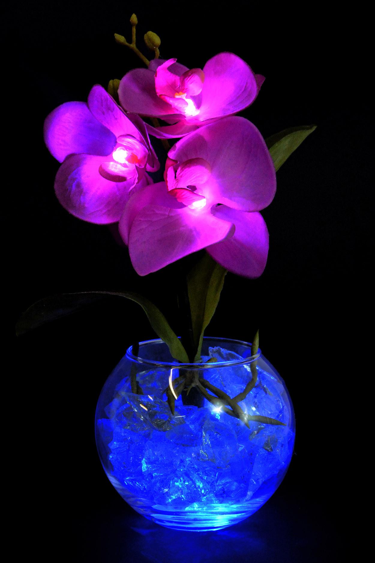 Ночник Орхидея фиолетовая (син) 3 цветка