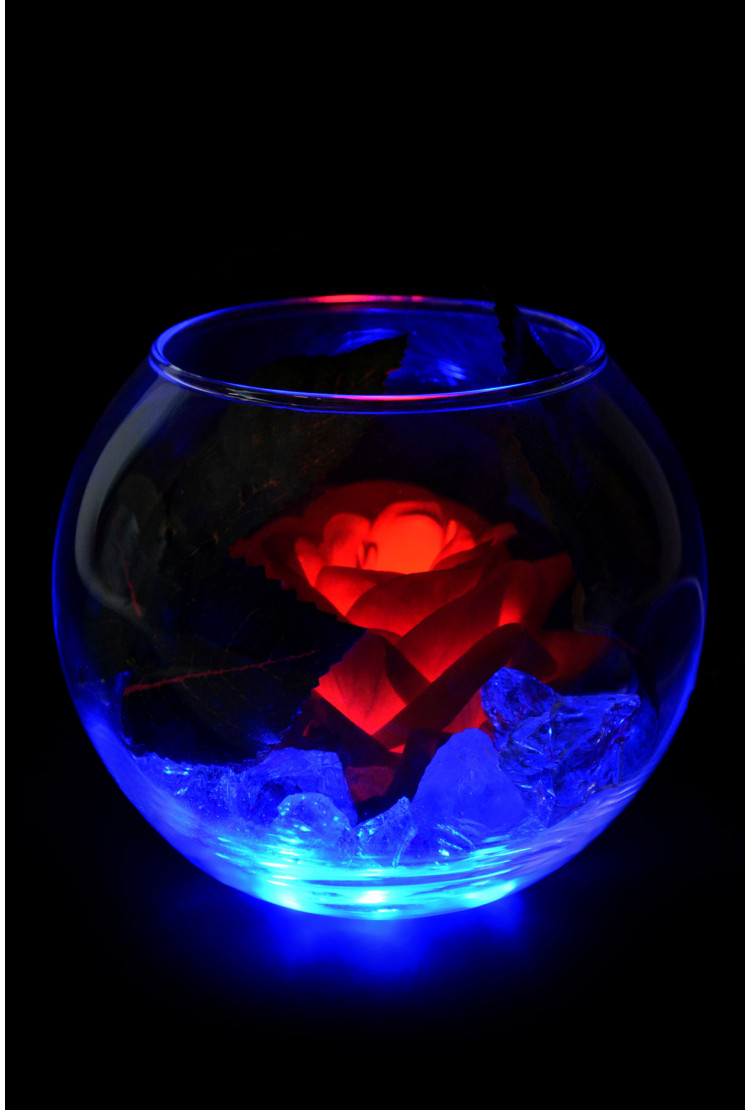Светящийся цветок Роза в шаре Красная (син)