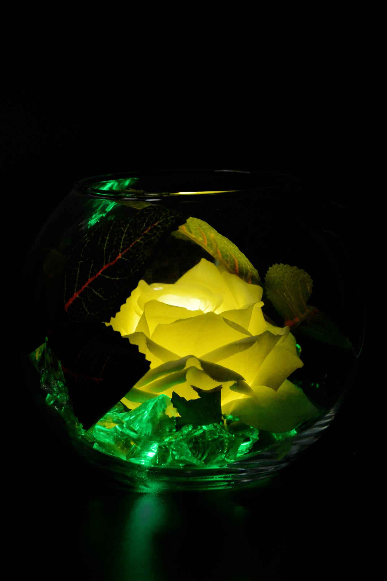 Ночник Роза в шаре Белая (зел)