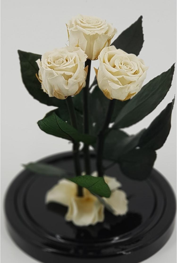 Роза в колбе Трио мини Белая 22*12,5*4см