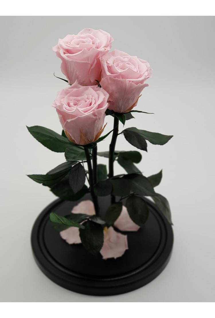 Роза в колбе Трио Премиум нежно Розовая 32*22*7см