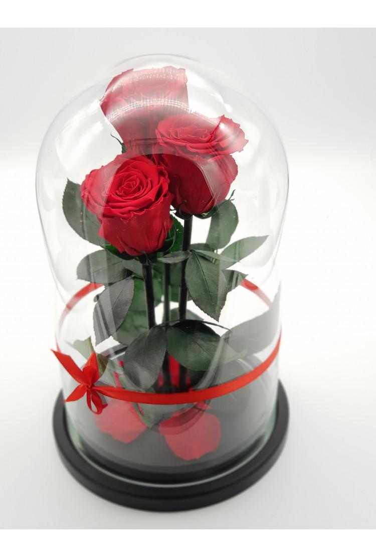Роза в колбе Трио Премиум Красная 32*22*7см