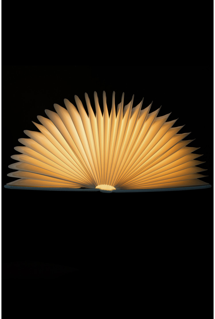 Ночник светящаяся книга  (Синяя)